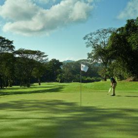 Golf14